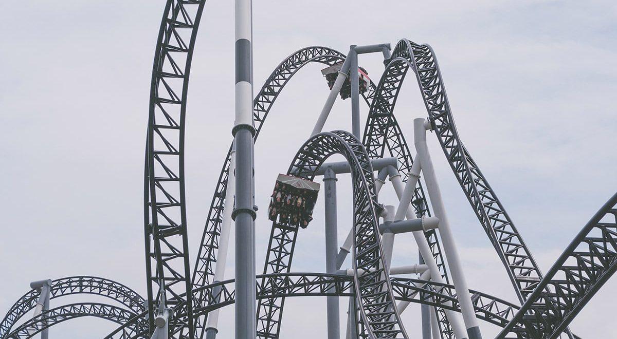 Phd Rollercoaster Ride
